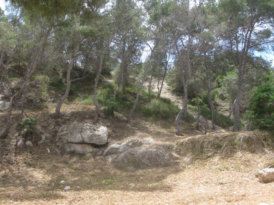 Парк возле пляжа Финестрат, Испания