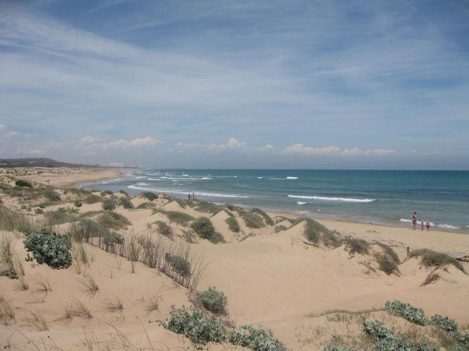 Движущаяся экосистема - дюны Гвардамар-дель-Сегура, Испания