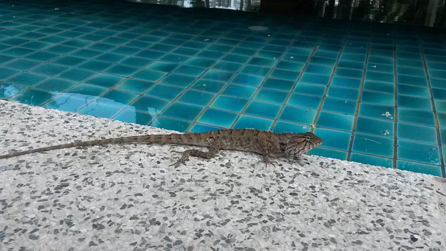 Ката Ной, Пхукет, Таиланд
