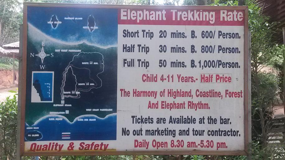 Цены на слоновьих фермах, катание на слонах Пхукет