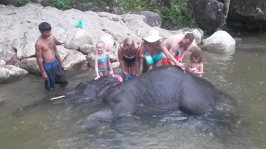 Купание со слоненком на слоновьих фермах, Таиланд