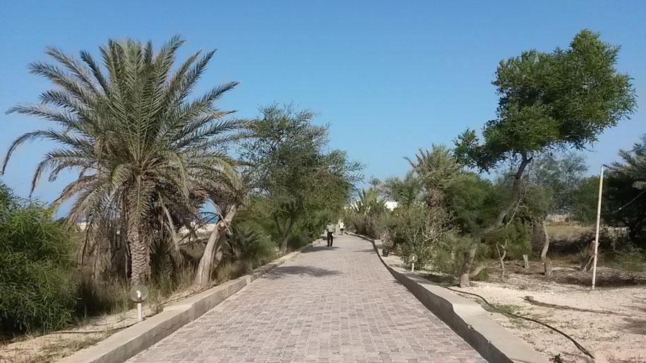 Дорога к пляжу, отель Джерба Плаза, Тунис