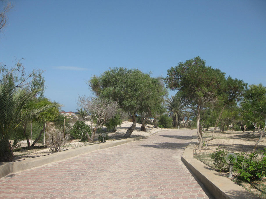 Дорога на пляж, отель Джерба Плаза, Тунис