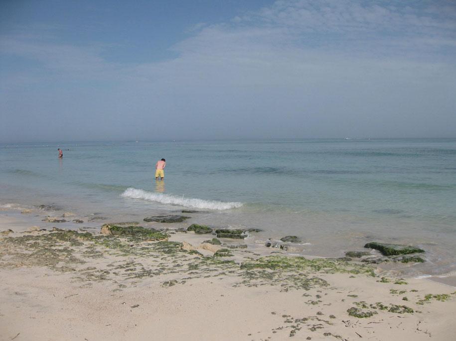 На пляжах острова Джерба, Тунис