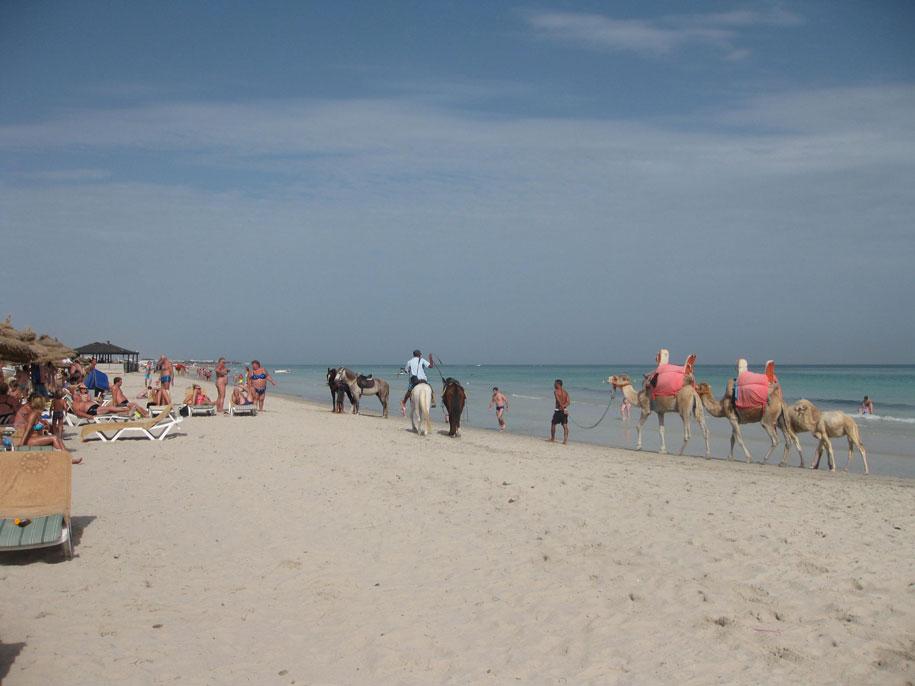 Пляжи Джербы